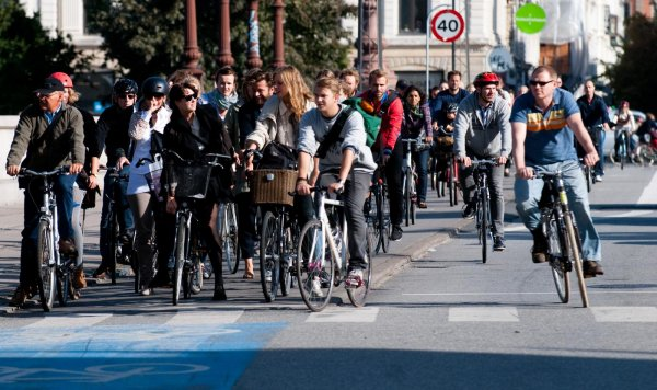 Cyclists Waiting for the Green Light in a Street of Copenhagen